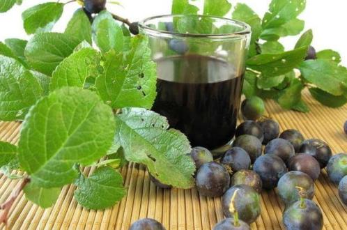 Рецепты домашних виноградных вин с добавлением воды