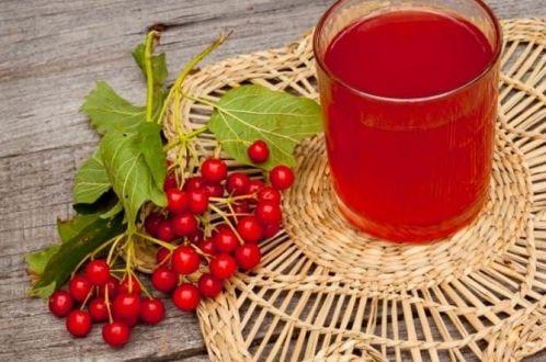 Настойка из калины: рецепты в домашних условиях на водке, на спирту