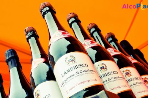 Ламбруско: все многообразие игристых вин из Италии