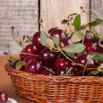 Вся соль в косточках: готовим наливку из цельной вишни