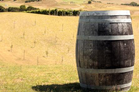 Избавляем домашнее вино от сивушных масел и запаха браги
