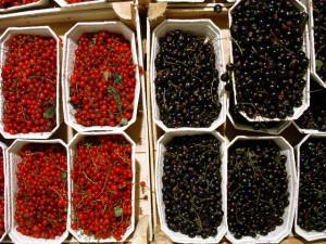 Наливка из черной и красной смородины