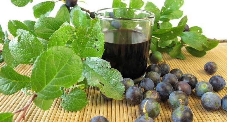 Стакан тернового вина