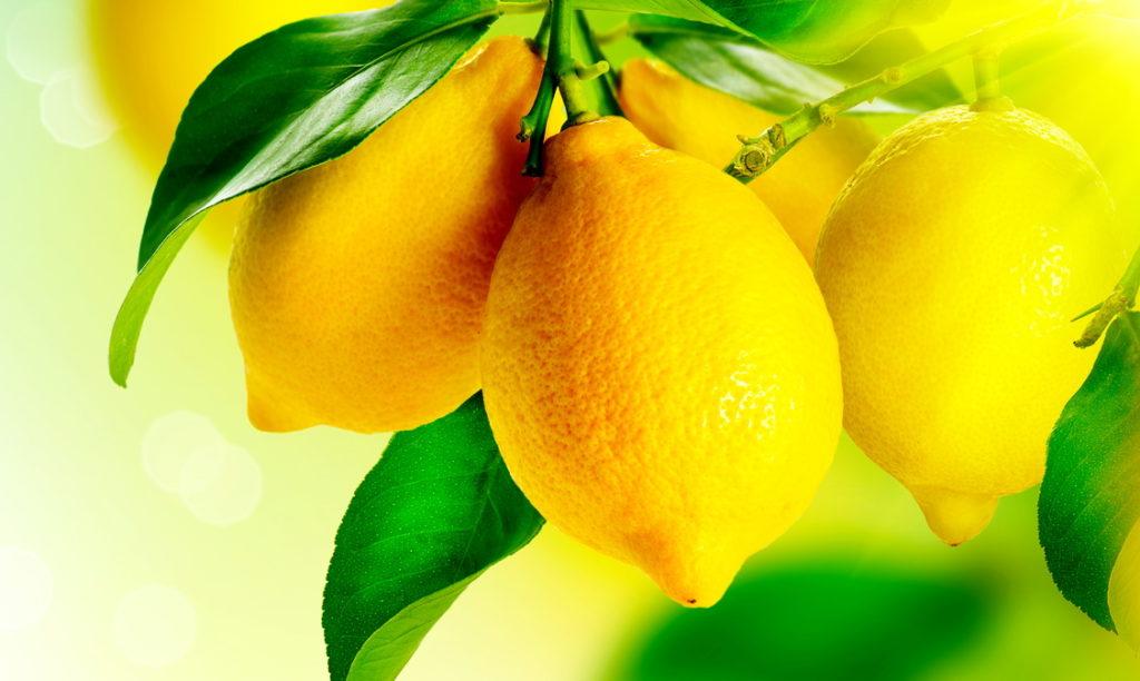 лимоны для настойки на самогоне