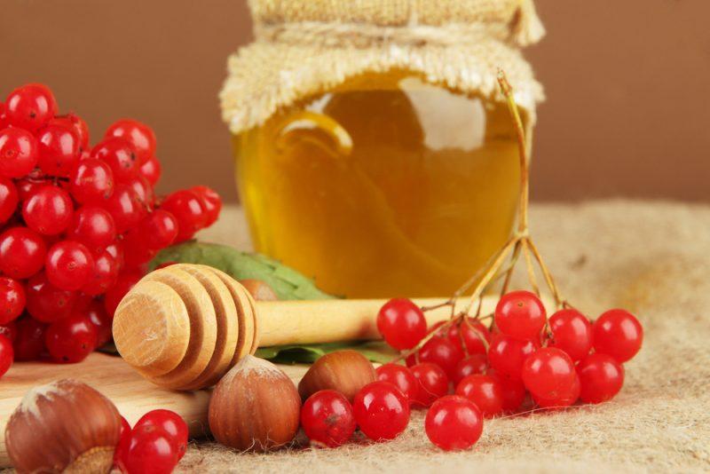 настойка из меда и калины