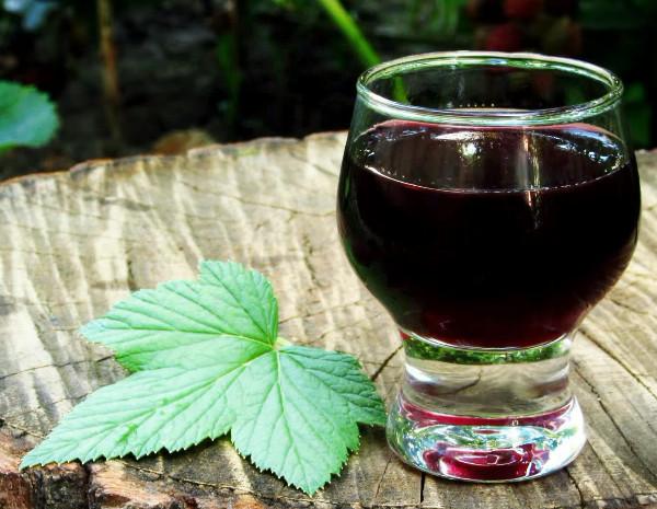 настойка из листьев черной смородины